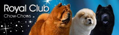 Royal Club Banner